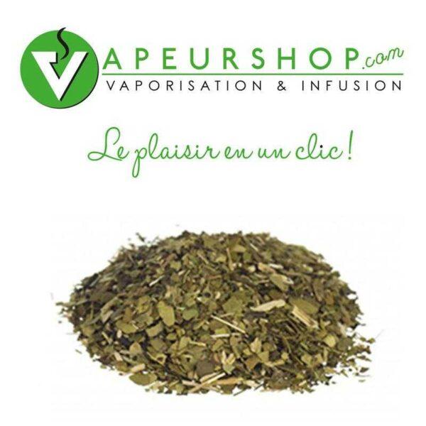 Yerba maté (Ilex paraguariensis) haché 80g herbs of the gods VapeurShop