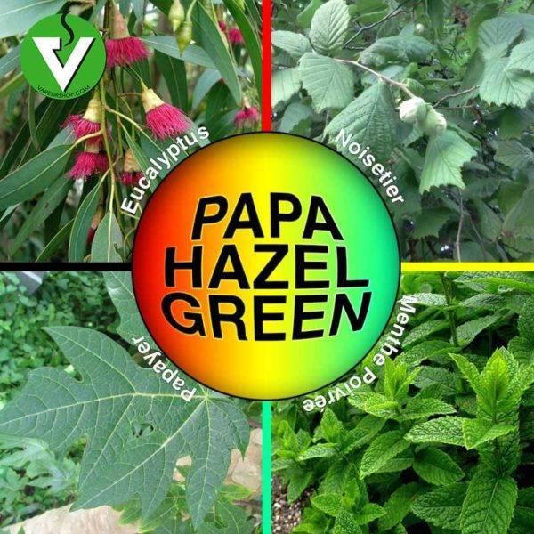 Papa Hazel Green noisetier papayer mentholé vaporisation infusion alternative greengo