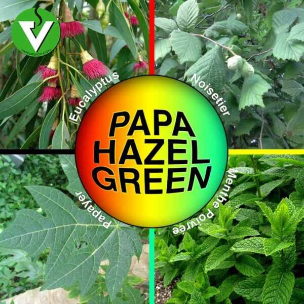 Papa Hazel Green noisetier papayer mentholé vaporisation infusion alternative greengo