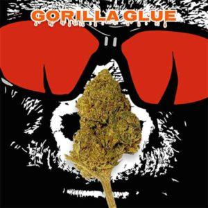 Gorilla Glue Greenhouse CBD Silver Line